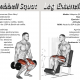 leg extension vs squat