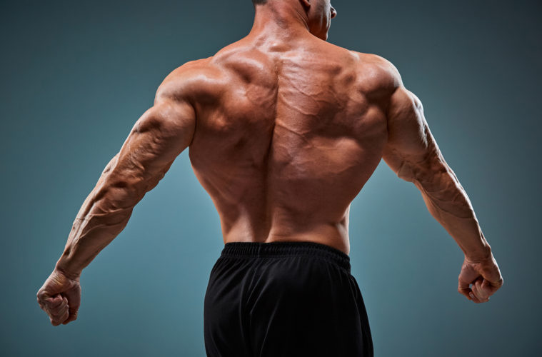 How to Build a Wider Back - One Muscle Building Hack